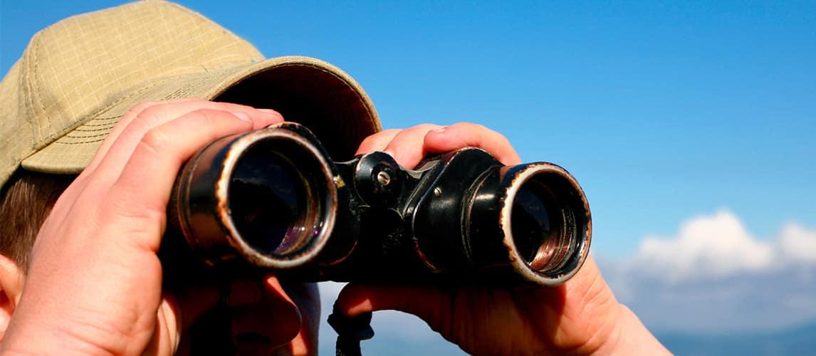 Los mejores binoculares 8 × 32 (Reseñas) en 2020